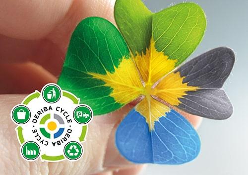DERIBA Group Blume mit Cycle